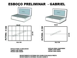 projeto gabriel