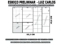 luiz carlos projeto -5