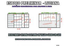 projeto luciana,organizador