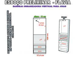 projeto flavia,organizador vertical
