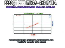 projeto ana maria,organizador