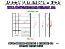 projeto hugo,organizador