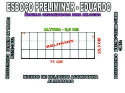 projeto eduardo,organizador