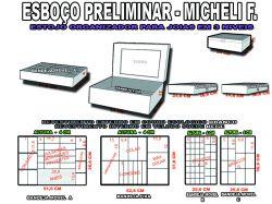 projeto micheli,organizador