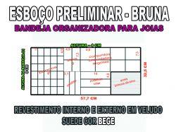 projeto bruna ,organizador