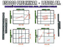projeto leticia b.organizador