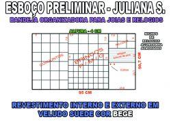 projeto juliana s,organizador