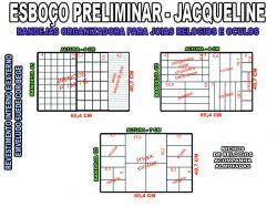 projeto jacqueline,organizador