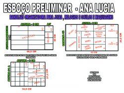 projeto ana lucia,organizador