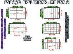 projeto milena s,organizador