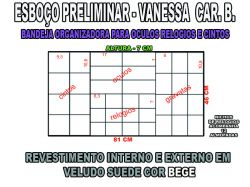projeto vanessa cb,organizador