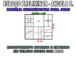 projeto angela c,organizador