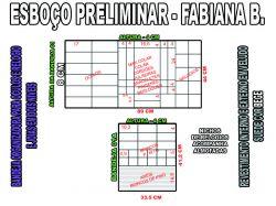 projeto fabiana b ,organizador