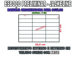 projeto jackeline,organizador