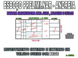projeto andreia ,organizador