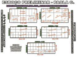 projeto paola g,organizador