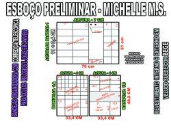 projeto michelle ms,organizador