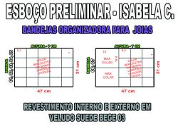 projeto isabela c,organizador