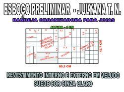 projeto julyana t n,organizador