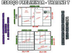 projeto thaiane,organizador