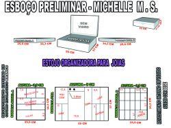 projeto michelle .ms,organizador