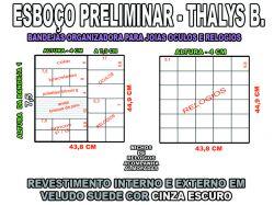 projeto thalys b 2,organizador