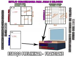 projeto franciane,organizador
