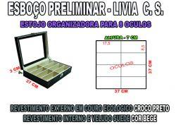 projeto livia c.s.organizador